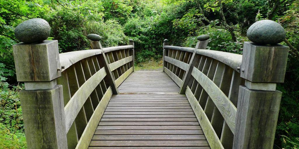 brug, de oversteek, een overgang naar chrononutrition maken