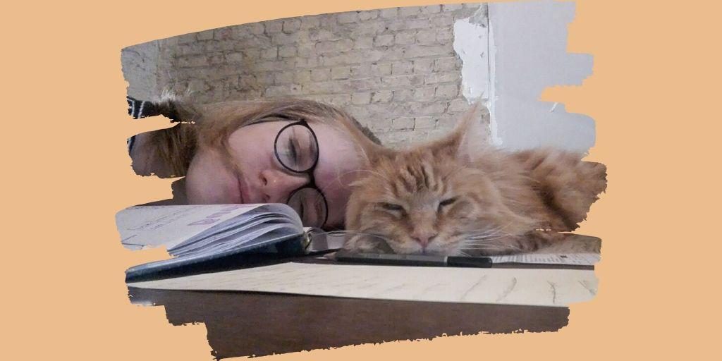 Dionysse en ik dromen van een wereld met ... oneindig veel kattensnoepjes