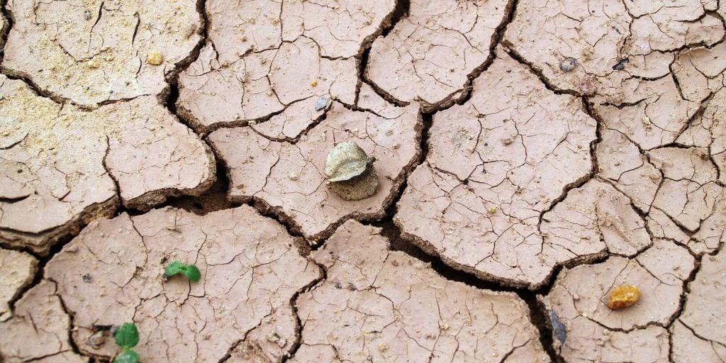 Droge grond, dorre aarde