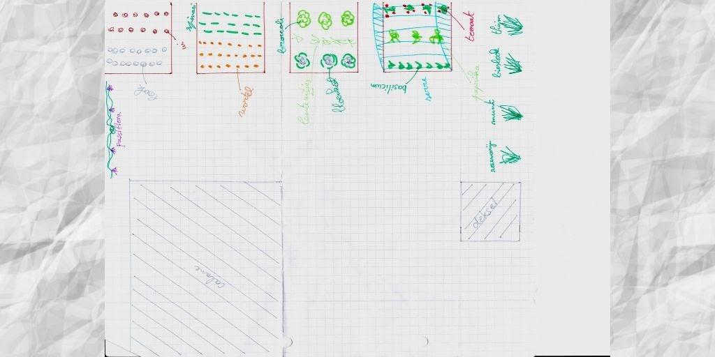 Tuinplan 2019 gelimiteerd met prairiebloemen