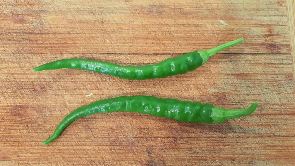Garden green pepper